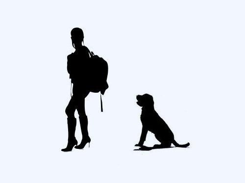 犬と一緒にバックパッカー00
