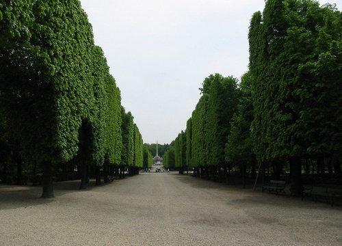 シェーンブルン宮殿12