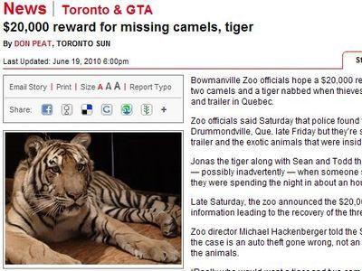 虎とラクダの乗ったトラックが盗まれた00