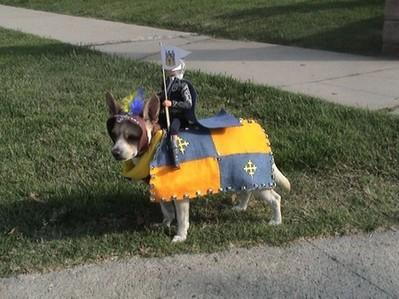 酷い犬のコスプレ06