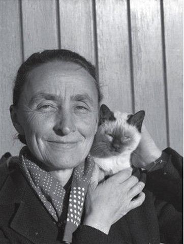 芸術家と猫 gk