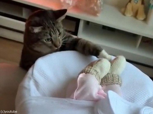 赤ちゃんと初対面02