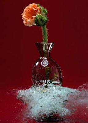 生け花と花瓶─破壊の美学04