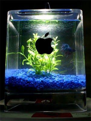 アップル・リサイクル09