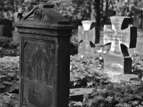 墓地に棺おけ型トイレ00