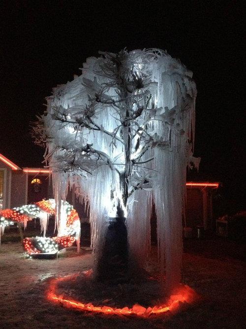 寒冷地仕様のクリスマスツリー04