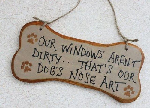 犬の飼い主ならわかること 032