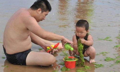 中国の緑の海05