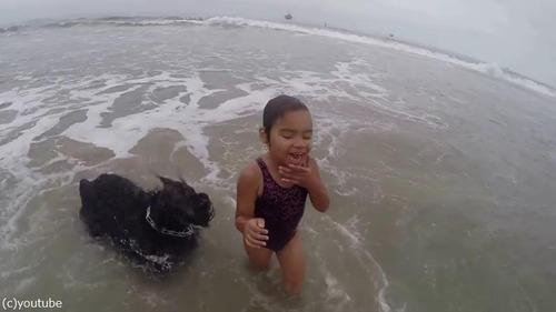 女の子を波から守る犬04