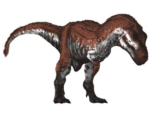 最大のティラノサウルス00