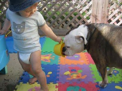赤ちゃんとペット01