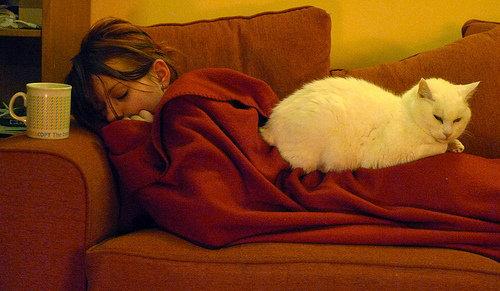 ペットと寝る理想と現実07