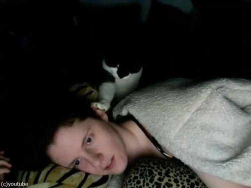 寝ていると、顔をチョンチョンしてくる猫01