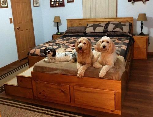 犬好きのベッド02