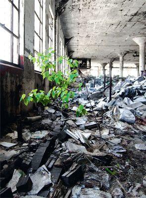 デトロイトの廃校06