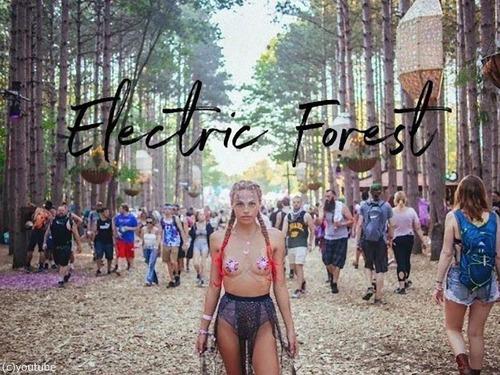エレクトリック・フォレスト・フェスティバル00