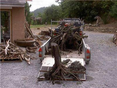 枯れ木で造られた馬のアート04