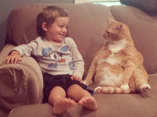 赤ちゃんの育ての親は猫00