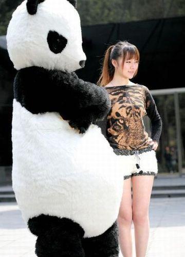 パンダのホットパンツ04