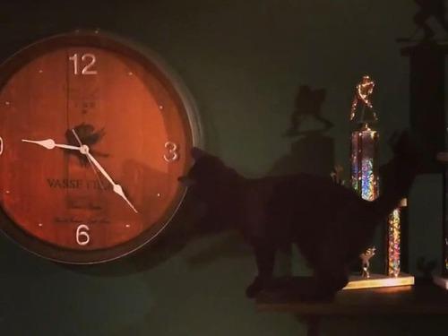 時計が進んでしまう理由02