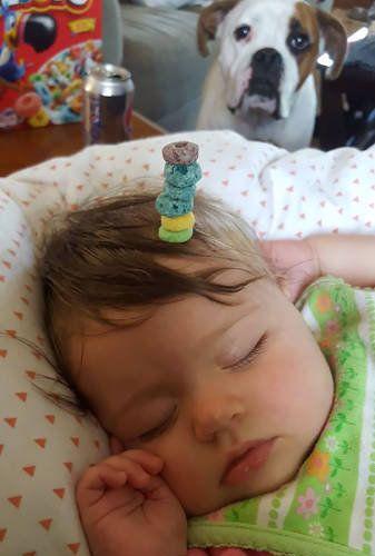 赤ちゃんの頭にシリアル積み02