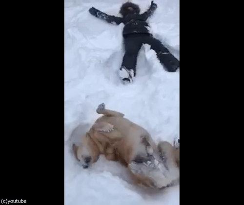 犬の目の前で雪に寝転がる06