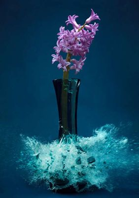 生け花と花瓶─破壊の美学08