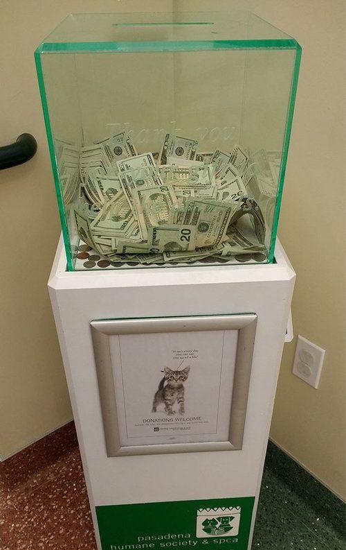 動物保護施設の募金箱にびっくり01