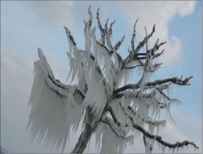 氷の世界18