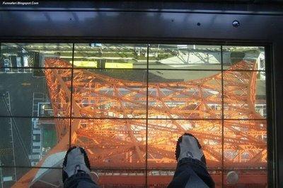 ガラス張りの高層ビルの下13