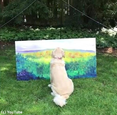 うちの犬は美術評論家02