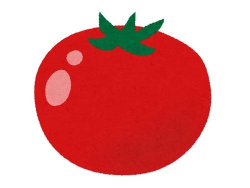 アヒルのかたちのトマト00
