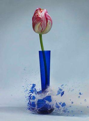 生け花と花瓶─破壊の美学13