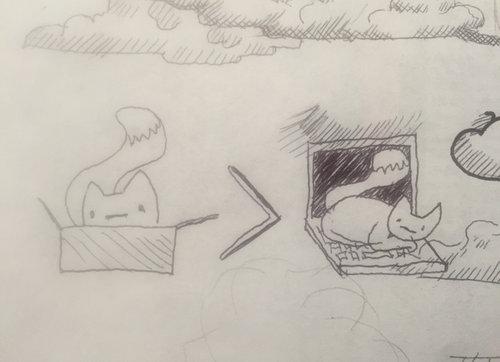 パソコンの邪魔をする猫02