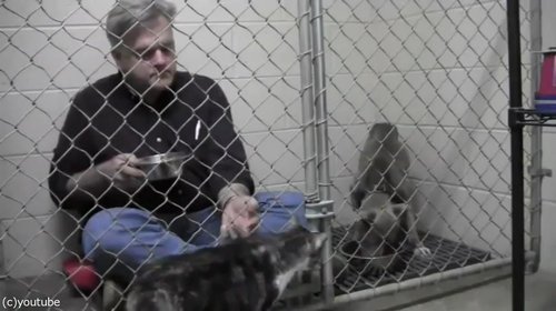 獣医がケージの中で犬と食事06