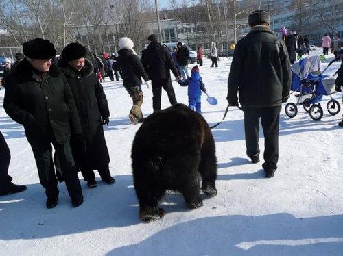 ロシアのクマ25