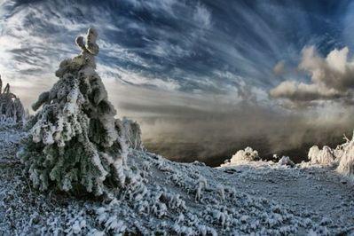雪景色12
