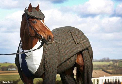イギリスでは馬も紳士05