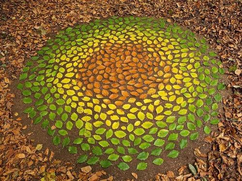 葉っぱや石を並べたアート00