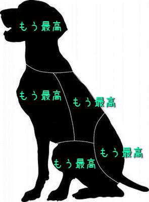 猫と犬のツボ02