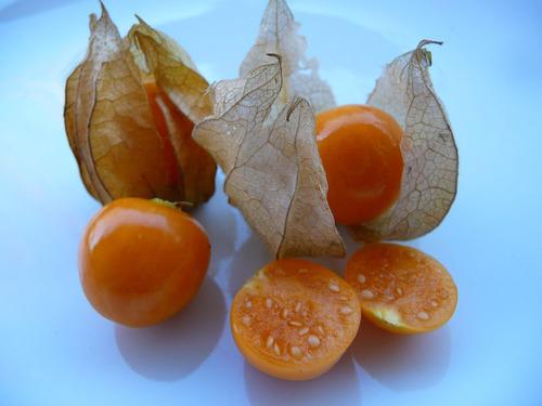 ワイルドでワンダフルな果物10選06