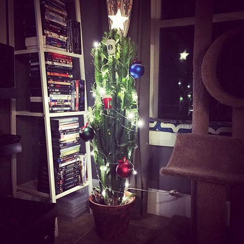 ペットからクリスマスツリーを守る戦い09