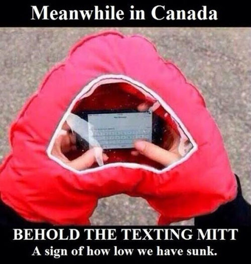 さすがカナダ13