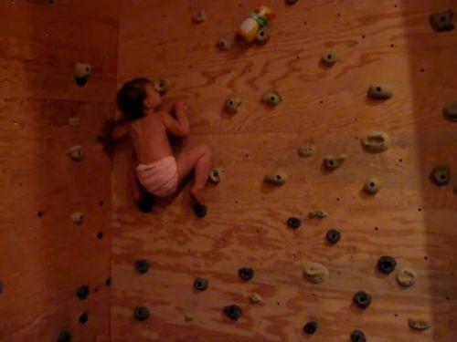 1歳のロッククライミング赤ちゃん