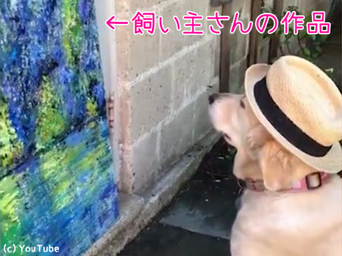 うちの犬は美術評論家00