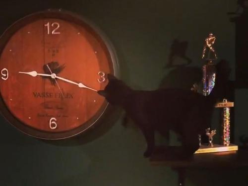 時計が進んでしまう理由01