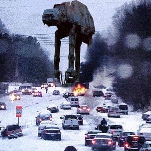アメリカ南部に雪が降るとこうなる02