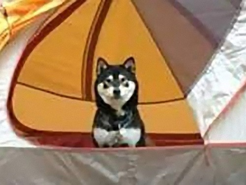 キャンプ友だち02