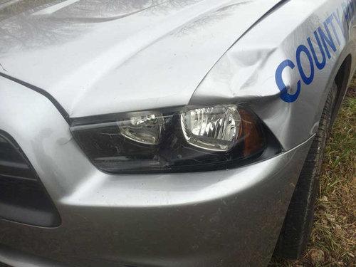 鹿とパトカーが接触事故07