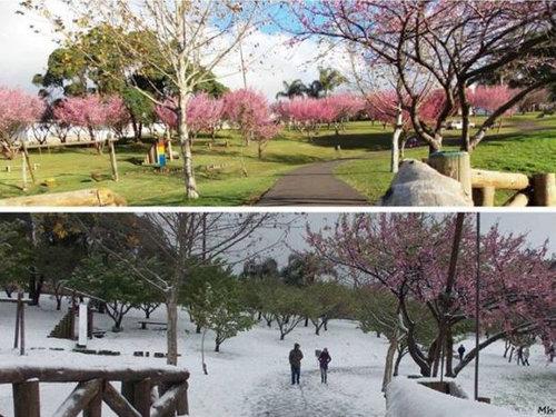 ブラジルに30年ぶりの雪01